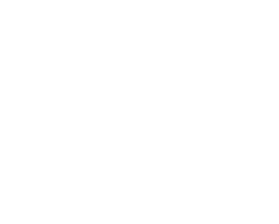 Jay Finn Logo White